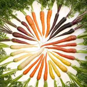 carrots multi colored